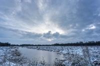 Ven in de sneeuw