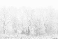 Mysterieus huisje in de sneeuw
